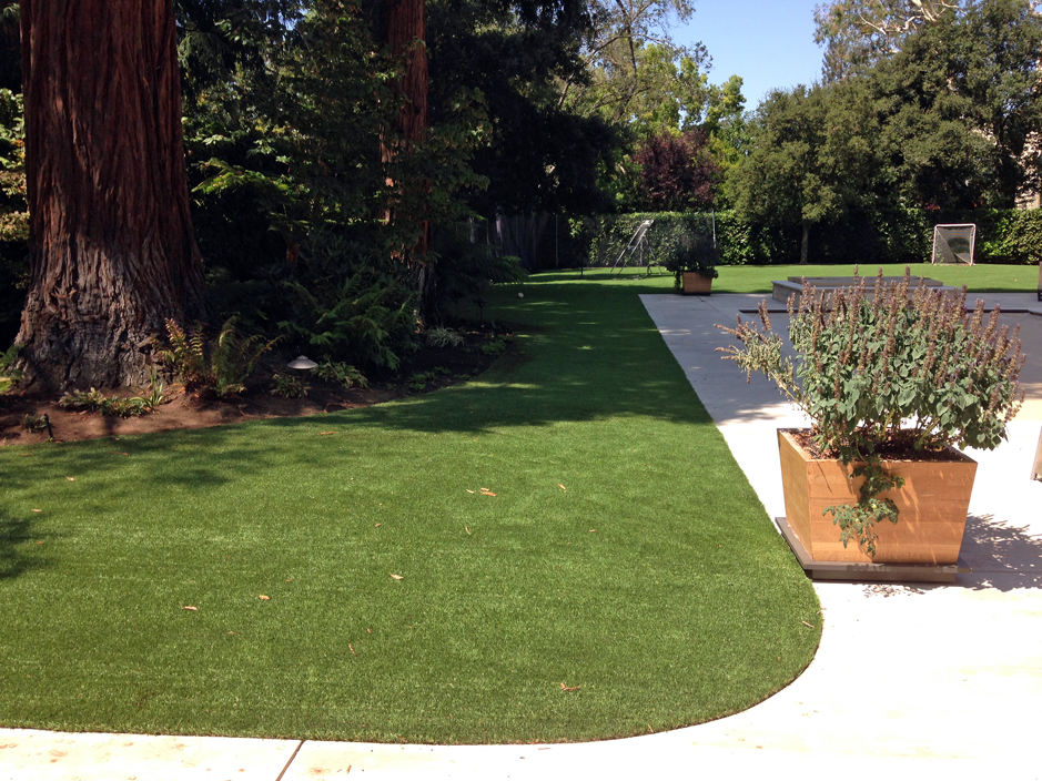 Artificial Grass Carpet Jacksonville Texas Rooftop Landscaping - Rooftop landscaping