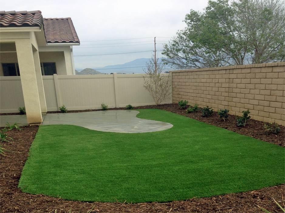 Artificial Turf Galveston, Texas Landscape Design, Backyard Landscape Ideas