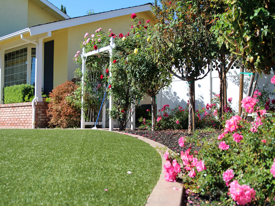 Fake Grass Bulverde Texas Landscaping Landscaping Ideas For