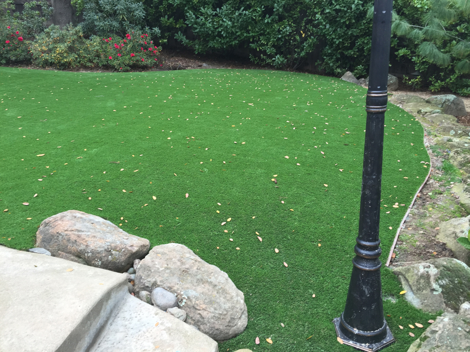 Artificial Grass Texas