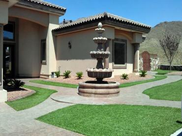 Artificial Grass Photos: Artificial Grass Carpet Hurst, Texas Landscape Ideas, Front Yard Ideas