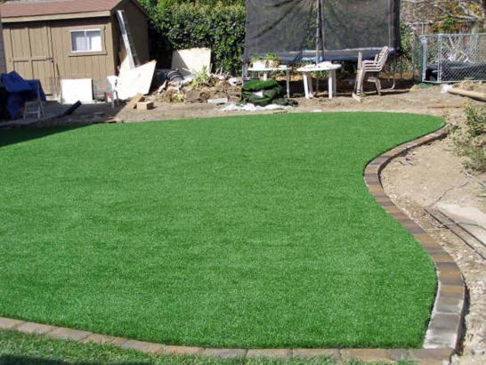 Artificial Grass Photos: Artificial Grass Carpet Nash, Texas Roof Top, Backyard Garden Ideas