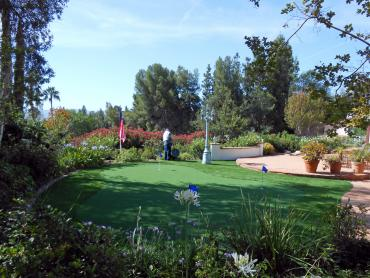 Artificial Grass Photos: Artificial Grass Everman, Texas Artificial Putting Greens, Backyard Landscape Ideas