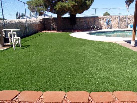 Artificial Grass Photos: Artificial Grass George West, Texas Landscaping, Kids Swimming Pools