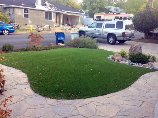 Artificial Grass Photos: Artificial Grass Grape Creek, Texas Rooftop, Front Yard Design