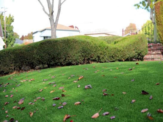 Artificial Grass Photos: Artificial Grass Installation Bloomington, Texas Lawn And Garden, Front Yard