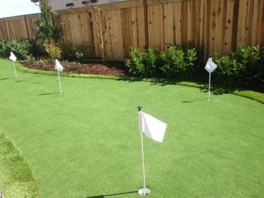 Artificial Grass Photos: Artificial Grass Installation Perezville, Texas Home Putting Green, Backyard Designs