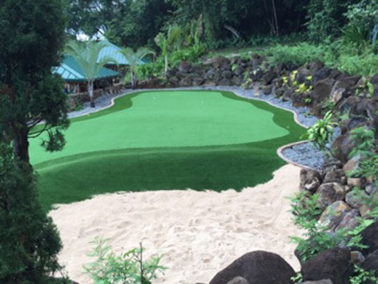 Artificial Grass Photos: Artificial Grass Orange, Texas Diy Putting Green
