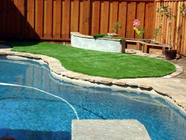 Artificial Grass Photos: Artificial Lawn Sugar Land, Texas Landscaping, Swimming Pool Designs