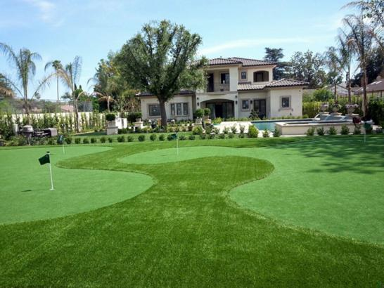 Artificial Grass Photos: Artificial Turf Cost Daingerfield, Texas Home Putting Green, Front Yard Ideas