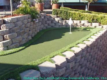 Artificial Turf Cost El Paso, Texas Putting Green Flags, Backyard Garden Ideas artificial grass