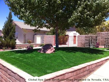 Artificial Grass Photos: Artificial Turf Cost Grand Prairie, Texas Design Ideas, Front Yard Design