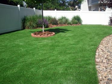 Artificial Turf Installation Pearland, Texas Landscape Photos, Backyard Ideas artificial grass