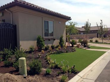 Artificial Grass Photos: Artificial Turf Lake Dallas, Texas Home And Garden, Front Yard Landscape Ideas