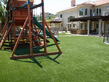 Artificial Grass Photos: Best Artificial Grass San Benito, Texas Kids Indoor Playground, Backyard Design
