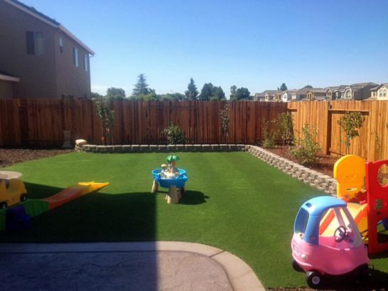 Artificial Grass Photos: Best Artificial Grass Seymour, Texas Landscape Design, Backyard Garden Ideas