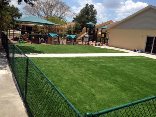 Artificial Grass Photos: Fake Grass Carpet Citrus City, Texas Playground Safety, Commercial Landscape