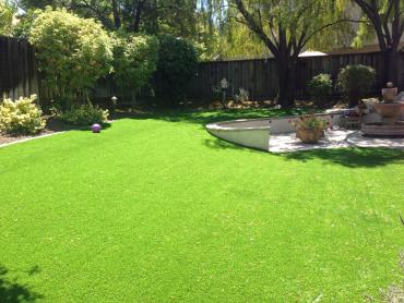 Fake Grass Carpet Farmers Branch, Texas Rooftop, Backyard artificial grass