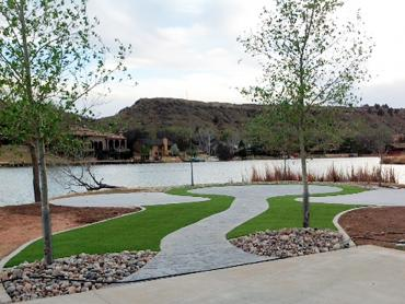 Fake Grass Carpet Midland, Texas Paver Patio artificial grass