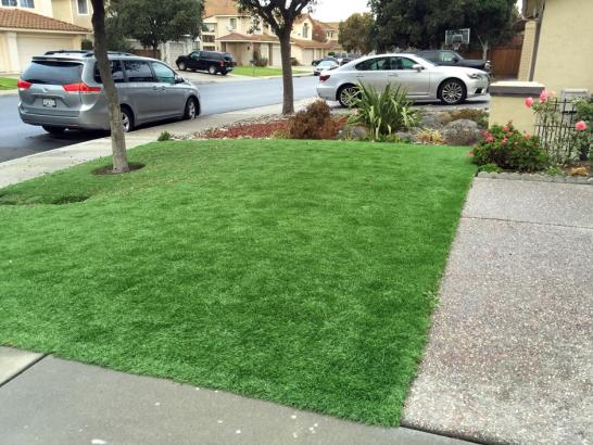 Fake Grass Carpet Tool, Texas Landscape Ideas, Front Yard Landscape Ideas artificial grass