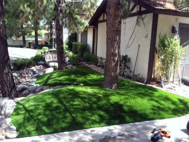 Artificial Grass Photos: Fake Lawn Burleson, Texas, Front Yard Landscaping Ideas