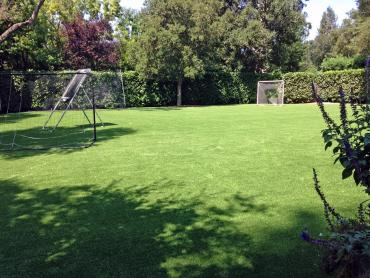 Artificial Grass Photos: Fake Lawn Henderson, Texas Backyard Playground, Backyard Garden Ideas