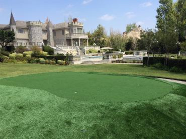 Fake Lawn Tyler, Texas Home And Garden, Front Yard Landscaping artificial grass