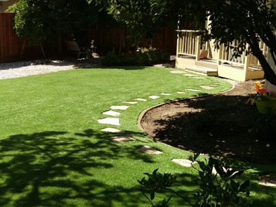 Artificial Grass Photos: Fake Lawn Universal City, Texas Landscape Ideas, Backyard Landscaping Ideas