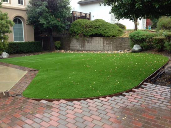 Artificial Grass Photos: Fake Turf Indian Hills, Texas Landscape Design, Front Yard Landscaping Ideas