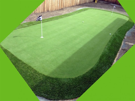 Artificial Grass Photos: Fake Turf San Marcos, Texas Design Ideas
