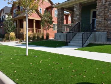 Grass Carpet Frisco, Texas Landscaping Business, Small Front Yard Landscaping artificial grass