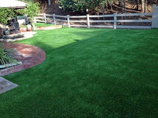 Artificial Grass Photos: Grass Carpet Shallowater, Texas Indoor Dog Park, Backyard