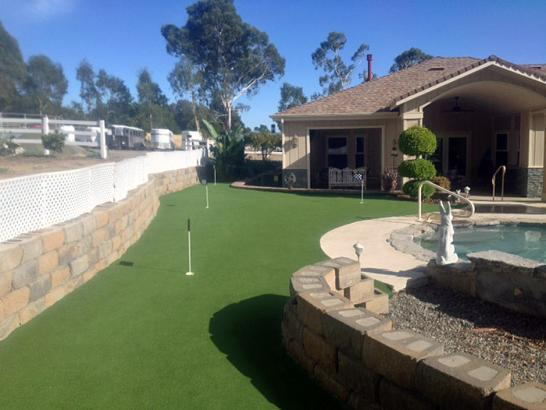Artificial Grass Photos: Grass Installation Oak Point, Texas Landscape Ideas, Backyard Landscape Ideas