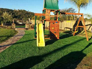 Artificial Grass Photos: Grass Installation Round Rock, Texas Lacrosse Playground, Backyards