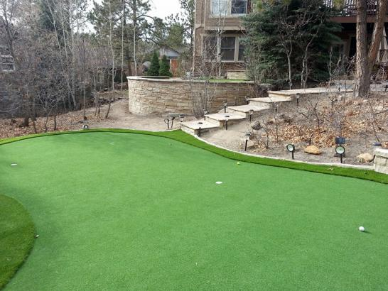 Artificial Grass Photos: Green Lawn Laredo, Texas Putting Green Carpet, Backyard Landscaping