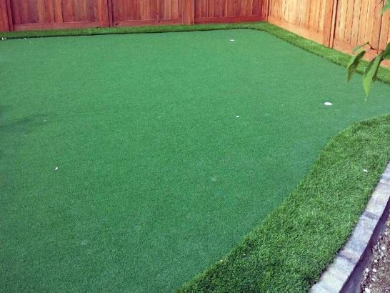 Artificial Grass Photos: Green Lawn Winters, Texas Best Indoor Putting Green, Backyard Ideas