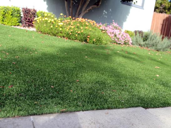 Artificial Grass Photos: How To Install Artificial Grass Bullard, Texas Lawns, Front Yard