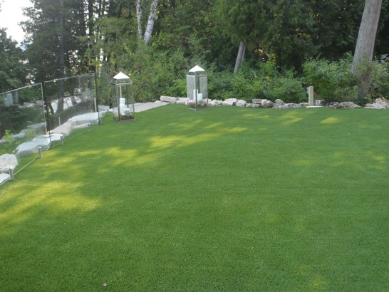 Artificial Grass Photos: Installing Artificial Grass Alamo, Texas Landscape Design, Backyard Designs