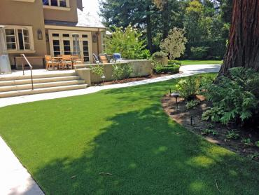 Artificial Grass Photos: Lawn Services Borger, Texas Lawn And Garden, Backyard