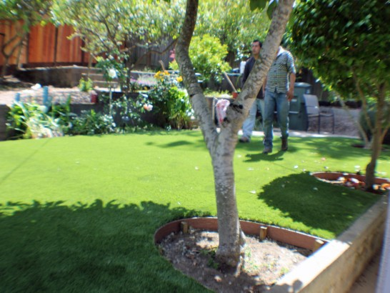 Artificial Grass Photos: Lawn Services Channelview, Texas Landscaping, Backyards