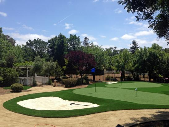 Artificial Grass Photos: Lawn Services Liberty City, Texas Office Putting Green, Front Yard