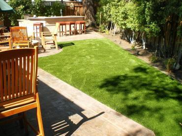 Artificial Grass Photos: Lawn Services Weatherford, Texas Dogs, Backyards