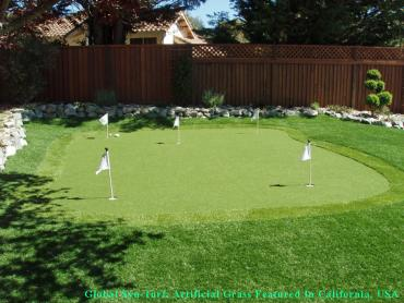 Artificial Grass Photos: Outdoor Carpet Laredo, Texas Artificial Putting Greens, Backyard Designs