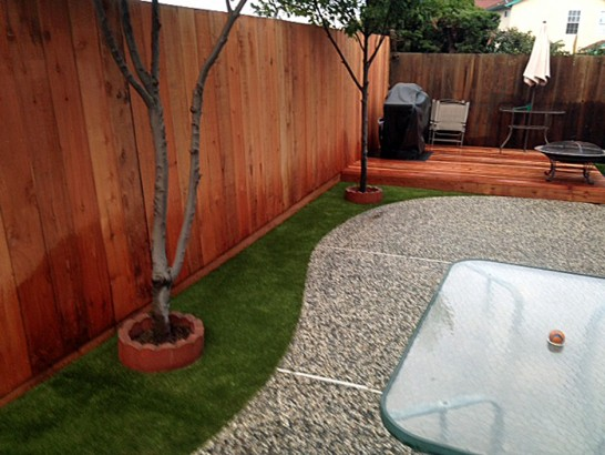 Artificial Grass Photos: Outdoor Carpet Pearland, Texas Garden Ideas, Backyard Design