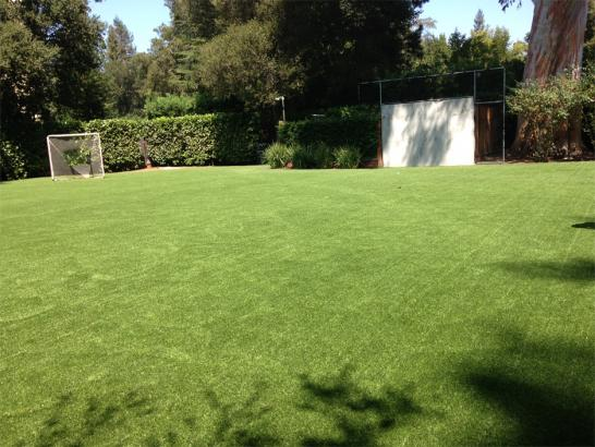 Artificial Grass Photos: Outdoor Carpet Wolfforth, Texas Soccer Fields, Small Backyard Ideas