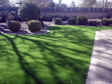 Artificial Grass Photos: Plastic Grass Clute, Texas Backyard Deck Ideas, Front Yard