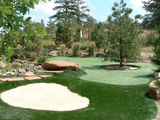 Artificial Grass Photos: Plastic Grass Lufkin, Texas Outdoor Putting Green, Backyard Landscaping Ideas