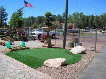 Artificial Grass Photos: Synthetic Grass Burkburnett, Texas Design Ideas, Commercial Landscape