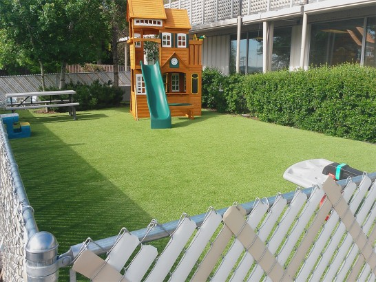Artificial Grass Photos: Synthetic Grass Cost Georgetown, Texas Lacrosse Playground, Small Backyard Ideas