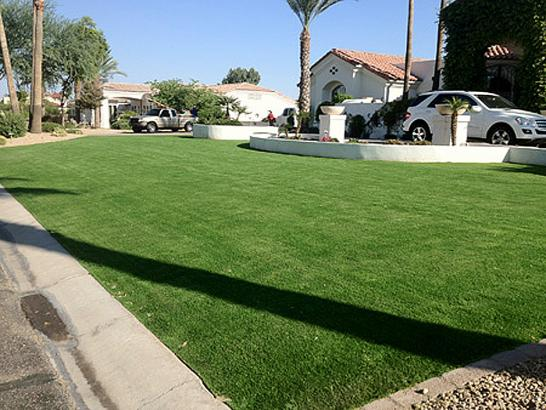 Artificial Grass Photos: Synthetic Grass Cost Mart, Texas Landscape Design, Small Front Yard Landscaping
